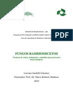 Fungos_Basidiomicetos_Luciana_J_Gimenes.pdf