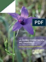 Flora Vegetacion Andevalo 2008
