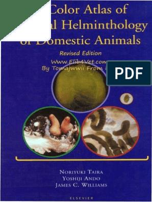 j helminthology nem parazita platyhelminthes