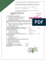 Evaluación de Ciencias Naturales Unidad