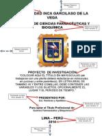Proyecto Original 11