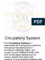 Circulatory Final