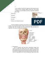 Otot-otot Mastikasi, Case 1 Dsp 3