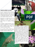 cartilla fauna y flora.docx