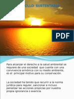 DESARROLLO-SUSTENTABLE1