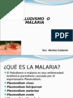 Malaria 13 Set 2013