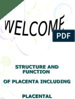 38047519 Placenta Ppt