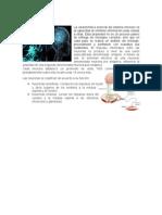 REPORTE 8 fisiologia