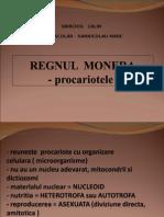 regnul monera procariote