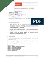 TÉCNICO SUPERIOR EN COMERCIO EXTERIOR.pdf