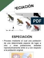 ESPECIACIÓN.pptx