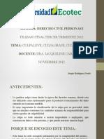2009564419 2375 2012F1 DER201 Derecho Civil Personas Presentacion - Sergio Rodriguez P.
