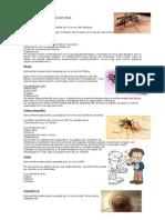Enfermedades Causadas Por Virus