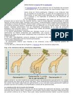 Teorías Evolutivas. Genética y Evolución. Guías 9 y 10
