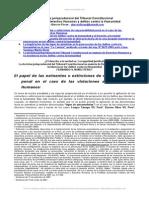 Doctrina Jurisprudencial Derechos Humanos Delitos
