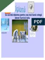 Se Acordă Diploma Pentru Cea Mai Bună Colegă Elevei Surcică Iulia