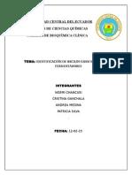 IDENTIFICACIÓN DE BACILOS GRAM NEGATIVOS NO FERMENTADORES