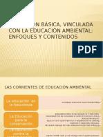 Educación Básica, Vinculada Con La Educación Ambiental