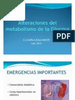 Alteraciones Del Metabolismo de La Glucosa [Sólo Lectura]