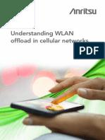Understanding Wifioffload 140221125952 Phpapp02