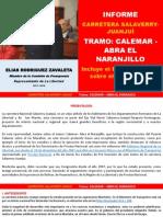 CARRETERA CALEMAR - ABRA EL NARANJILLO