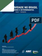 Produtividade no Brasil IPEA
