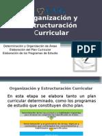 Organización y Estructuración Curricular