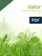Ejemplo 41 - 2007, 2010 y 2013 - Valor Creativo