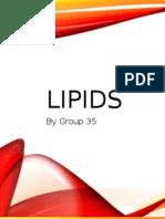 Activity 08 Lipids