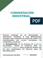 Fermentacion Industrial