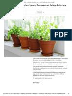 10 Plantas Medicinales Comestibles Que No Deben Faltar en Casa _ Diario Ecologia