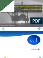 2011 - SP - Cadeia do Petroleo na Baixada Santista - Apresentação FORUM Santos.pdf