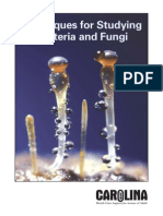Techniques for Studying Bacteria and Fungi