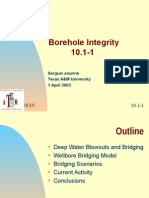 Borehole Integrity