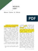 O DESCAMINHO DA IDENTIDADE.pdf