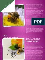 Bzz Presentation