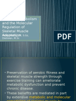 Exercise Metabolism and the Molecular Regulation of Skeletal Muscle Adaptation