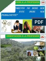 ECUADRO MEGADIVERSO-SPS FORESTALES.pdf