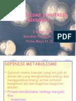Copy of Metabolisme & Nutrisi Editan Gitu