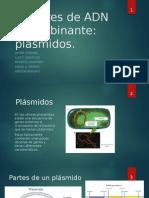 Exposición sobre plásmidos
