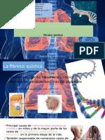 Fibrosis Quística (diapositivas)