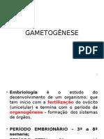 GAMETONESE