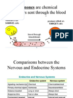 jeremy hypo pituitary powerpoint