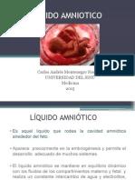 1LIQUIDO_AMNIOTICO CAMN