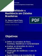 Vulnerabilidade x Resiliência em Cidades Brasileiras.pdf