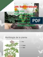 Diapositivas PAPA ... Patricia