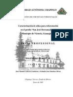 Reforestacion Ok
