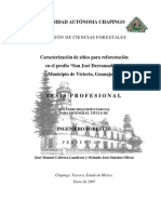 reforestacion ok.pdf