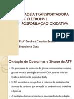 Cadeia transportadora de elétrons e fosforilação Oxidativa.pdf