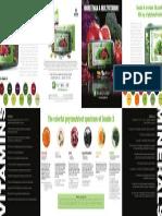 DOUBLEX Brochure
